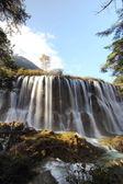 Portrait of waterfall — Stock Photo
