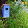 Blue bird house — Stock Photo