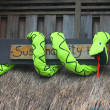 Snake on sustainability — Stockfoto