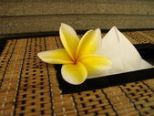 Tissue box with flower — Stock Photo