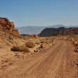 Desert trail — Stock Photo #13824702