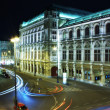 Stock Photo: Viennoperhouse at night