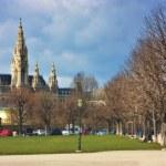 Vienna City Hall Rathaus — Stock Photo #24320095