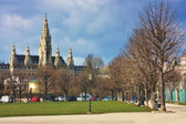 Vienna City Hall Rathaus — Stock Photo