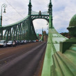 Stock Photo: Liberty Bridge in Budapest