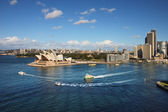 A Skyline View of Sydney Opera House and ferry activity — Stock Photo