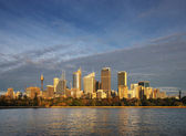 Skyline View of Sydney at dawn seen from the botanical gardens — Stock Photo