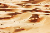Rolling sand dunes of the Arabian desert — Photo