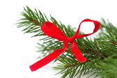 Bow on a Christmas tree, isolated on white background — Stock Photo
