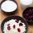 Milk, sour cream, cottage cheese and dried cranberries on a wooden table — Stock Photo #42698411