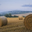 Beautiful golden hour hay bales sunset landscape - Stock Photo