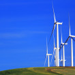 Wind Turbines on Hill - Stock Photo