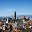 Roofs of Firenze - Stock Photo