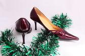 Ladies of shoes. — Stock Photo