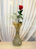 A lone rose in a vase. — Stock Photo