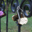 Padlocks on fidelity in love. — Stok fotoğraf