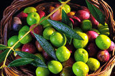 Mixed olives with different maturation — Stock Photo