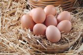 Eggs in a straw basket — Stock Photo
