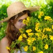 Hidden behind the daisies — Stock Photo