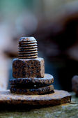 Old rusty bolt — Foto Stock