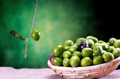 Basket of sicilian green olives — Stock Photo