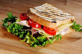 Grilled white bread toast — Stock Photo