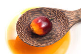 Oil Palm Fruit — Foto de Stock