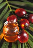 Owoc palmy olejowej i olej do smażenia — Zdjęcie stockowe