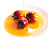 Oil palm fruit and cooking oil — Stock Photo