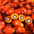 Oil palm fruit — Stock Photo #31672071