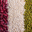 Grains and beans — Stock Photo