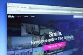 Flickr Website — Stock Photo