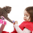 Little girl playing with kitten — Stock Photo #14176261
