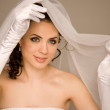 Bride with the veil — Stock Photo