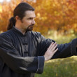 Tai Chi — Stock Photo #14176689