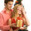 Christmas Surprise — Stock Photo #14176734