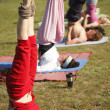 Yoga practicing outdoors — Stok fotoğraf