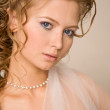 Stock Photo: Close up portret of bride