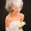 Happy bride dressed in  retro style - Stock Photo