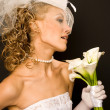 Brides profile — Stock Photo