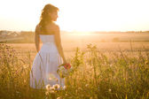 Sunny evening — Stock Photo