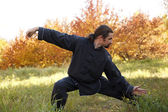 Tai Chi — Stock Photo