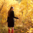 Gold autumn — Stock Photo #29638537