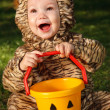 图库照片: Toddler in tiger costume