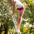 Woman on ladder — Stock Photo