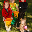 Stock Photo: Four kids trick or treating