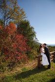 Autumn wedding — Stockfoto