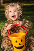 Toddler in tiger costume — Stock Photo