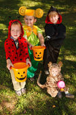 Four kids trick or treating — Stock Photo