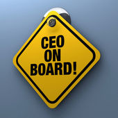 CEO On Board — Stock Photo